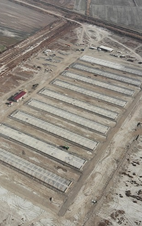 Constructing of the poultry breeding zone with 9 houses