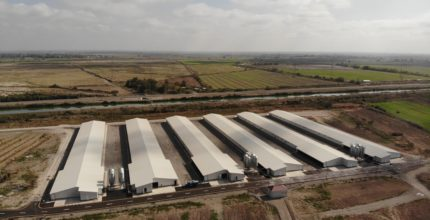 Contract has been signed for the construction of two poultry farms in the Ujar region